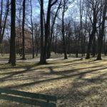 Konecki park - 16 marca 2020 roku - zdjęcie nr 45