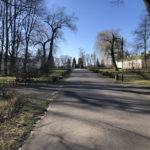 Konecki park - 16 marca 2020 roku - zdjęcie nr 47