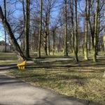 Konecki park - 16 marca 2020 roku - zdjęcie nr 48