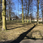 Konecki park - 16 marca 2020 roku - zdjęcie nr 49