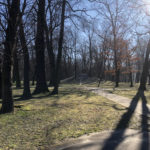 Konecki park - 16 marca 2020 roku - zdjęcie nr 50