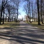 Konecki park - 16 marca 2020 roku - zdjęcie nr 51