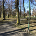Konecki park - 16 marca 2020 roku - zdjęcie nr 52