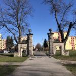 Konecki park - 16 marca 2020 roku - zdjęcie nr 53