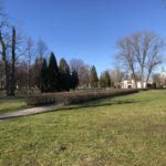 Konecki park - 16 marca 2020 roku - zdjęcie nr 54