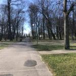 Konecki park - 16 marca 2020 roku - zdjęcie nr 55