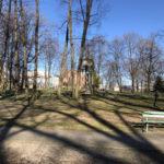Konecki park - 16 marca 2020 roku - zdjęcie nr 60