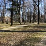 Konecki park - 16 marca 2020 roku - zdjęcie nr 61