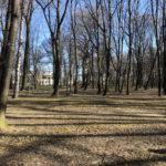 Konecki park - 16 marca 2020 roku - zdjęcie nr 64