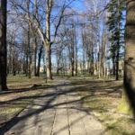 Konecki park - 16 marca 2020 roku - zdjęcie nr 65