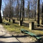 Konecki park - 16 marca 2020 roku - zdjęcie nr 68