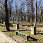 Konecki park - 16 marca 2020 roku - zdjęcie nr 69