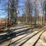 Konecki park - 16 marca 2020 roku - zdjęcie nr 70