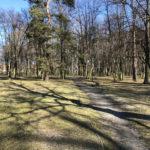 Konecki park - 16 marca 2020 roku - zdjęcie nr 75