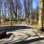 Konecki park - 16 marca 2020 roku - zdjęcie nr 78
