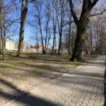 Konecki park - 16 marca 2020 roku - zdjęcie nr 2