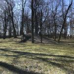 Konecki park - 16 marca 2020 roku - zdjęcie nr 88