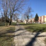 Konecki park - 16 marca 2020 roku - zdjęcie nr 90