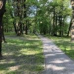Konecki park - maj 2020 zdjęcie nr 10