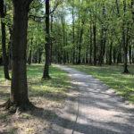 Konecki park - maj 2020 zdjęcie nr 11