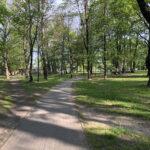 Konecki park - maj 2020 zdjęcie nr 14