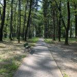Konecki park - maj 2020 zdjęcie nr 16