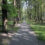 Konecki park - maj 2020 zdjęcie nr 17