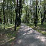Konecki park - maj 2020 zdjęcie nr 19