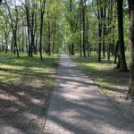 Konecki park - maj 2020 zdjęcie nr 20