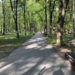 Konecki park - maj 2020 zdjęcie nr 21