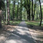 Konecki park - maj 2020 zdjęcie nr 22