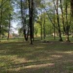 Konecki park - maj 2020 zdjęcie nr 24