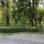 Konecki park - maj 2020 zdjęcie nr 28