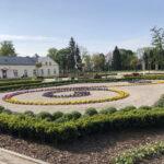 Konecki park - maj 2020 zdjęcie nr 32