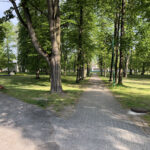 Konecki park - maj 2020 zdjęcie nr 33