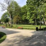 Konecki park - maj 2020 zdjęcie nr 34