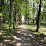 Konecki park - maj 2020 zdjęcie nr 36
