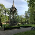 Konecki park - maj 2020 zdjęcie nr 4
