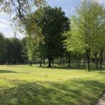 Konecki park - maj 2020 zdjęcie nr 46
