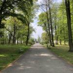 Konecki park - maj 2020 zdjęcie nr 48