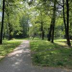 Konecki park - maj 2020 zdjęcie nr 49