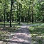 Konecki park - maj 2020 zdjęcie nr 5
