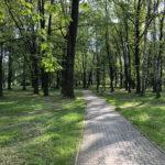 Konecki park - maj 2020 zdjęcie nr 6