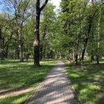 Konecki park - maj 2020 zdjęcie nr 7