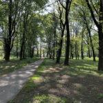 Konecki park - maj 2020 zdjęcie nr 8